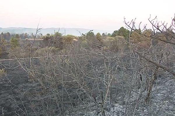 Depuis le 1er juillet, le feu a détruit 94 hectares de végétation et de cultures dans le département du Tarn.