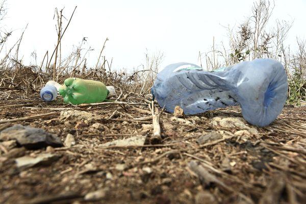 Bouteilles en plastique abandonnées dans la nature
