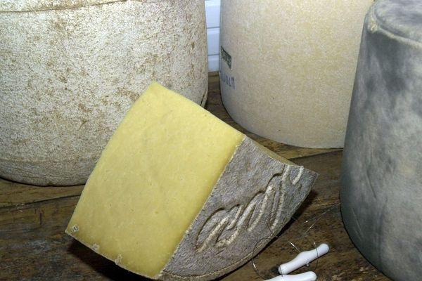 A Cussac, dans le Cantal, Charlotte Salat a perdu l'appellation Salers. Le jury de la filière a estimé que ses fromages ne méritaient plus de porter l'AOP. Elle approvisionne pourtant de très grandes tables et vend même à l'international.