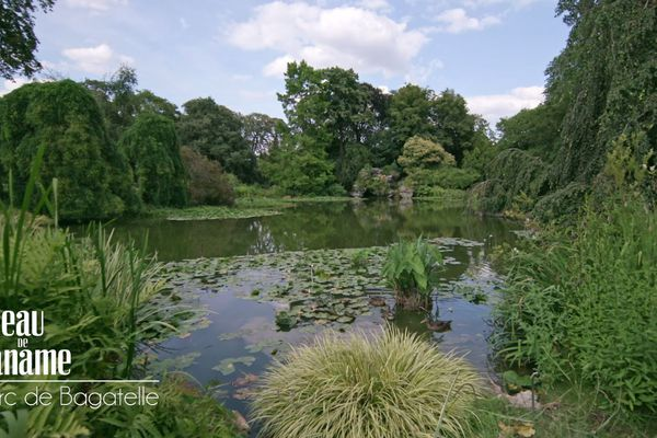 Bagatelle est un des quatre jardins botaniques de la ville de Paris.