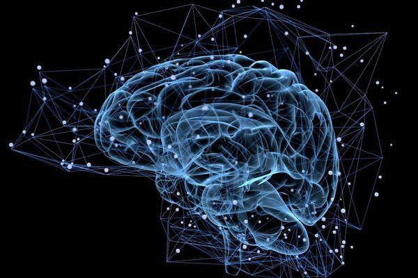 """La SLA ou maladie de Charcot provient d'un dysfonctionnement des moto-neurones, """"ensemble contre la sla"""" veut réunir des fonds pour la recherche"""