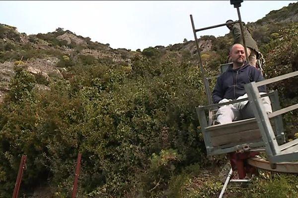 Dans les vignes des Cinque Terre, ce monorail installé dans les années 80 a changé la vie des viticulteurs