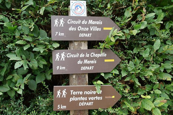 Les promenades autour de Rieulay