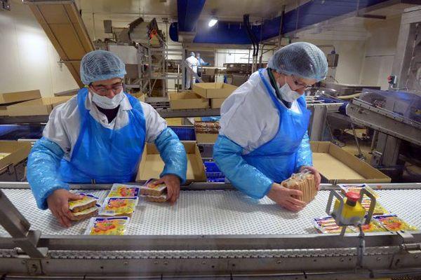 En Bretagne, 156 éleveurs travaillent directement pour le groupe Doux.