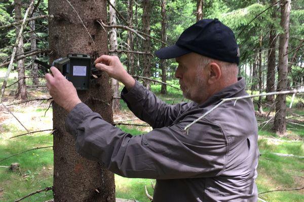 Bruno Loisel traque le puma en Haute-Loire, mais uniquement avec des caméras.