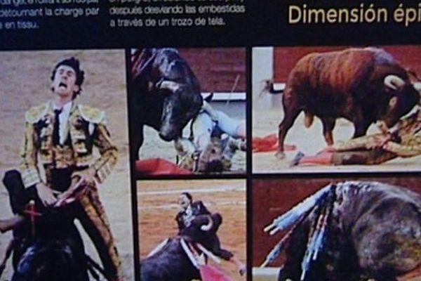 """Exposition """"tauromachies universelles"""" au Carré d'art à Nîmes - 2016"""