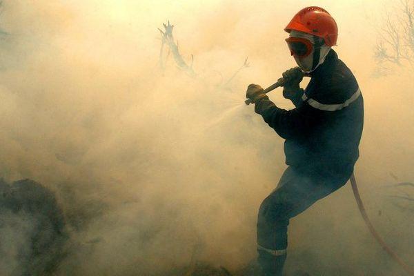 ILLUSTRATION - Pompiers à la lutte sur un feu de maquis en Corse.