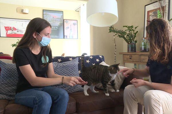 Claire, à gauche, va s'occuper de Charlie, le chat de Margot, durant sa semaine de vacances en Savoie.