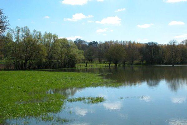 Entre Mâcon et Villefranche-sur-Saône, le Val de Saône joue un rôle de zone d'expansion des crues de la Saône en amont de Lyon