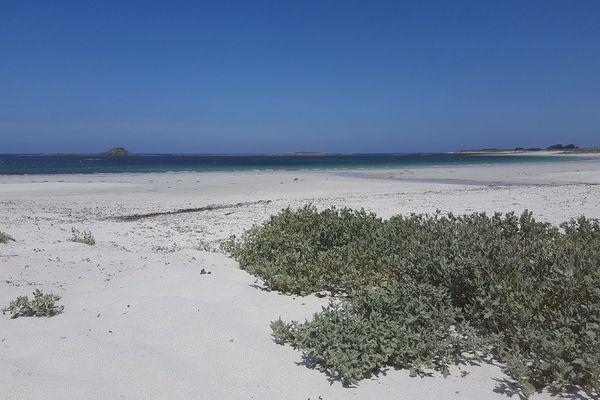 La plage de Tréompan sur la commune de Ploudalmézeau ouverte cette année après avoir été fermée à titre conservatoire en 2018 pour éviter une fermeture définitive