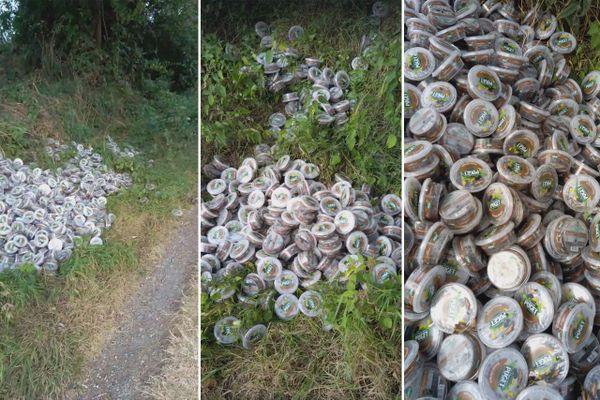 Des centaines de produits périmés Carrefour retrouvés dans une forêt — Nord