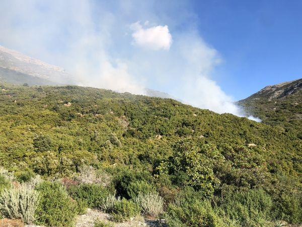 Deux hectares de maquis ont déjà été brûlés à 16 heures. Aucune habitation n'est menacée.