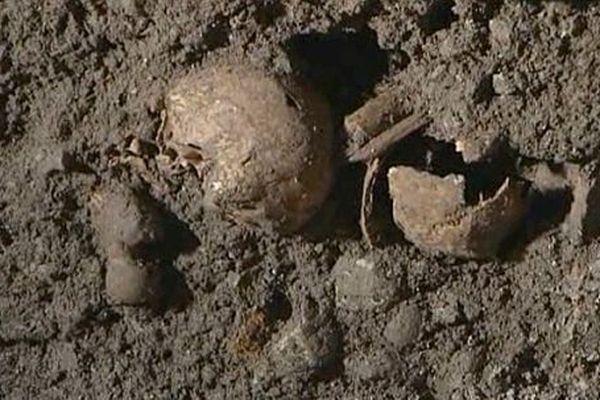Des crânes ont été retrouvés par les archéologues