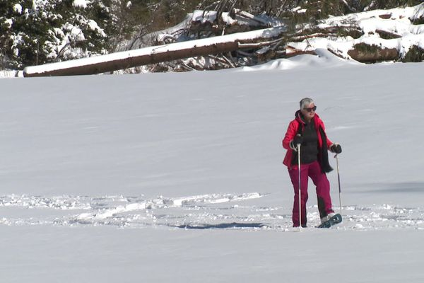 Station Gap-Bayard (Hautes-Alpes) : les habitués ont rechaussé les skis pour profiter de la neige.