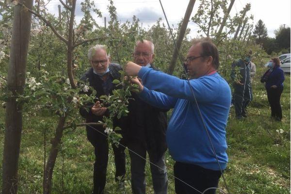 Une enveloppe exceptionnelle a été votée le vendredi 16 avril par le conseil départemental du Lot-et-Garonne pour venir en aide aux agriculteurs touchés par les épisodes de gel.