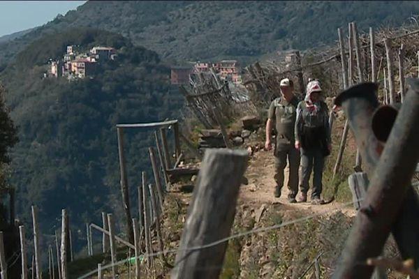Les randonneurs nombreux pour arpenter les chemins des Cinque Terre