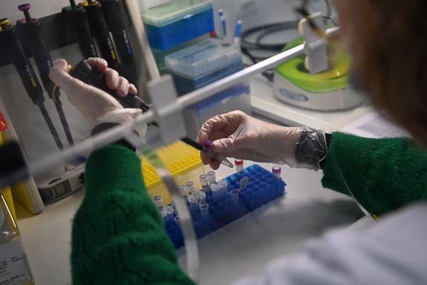 Les tests positifs sont désormais systématiquement analysés une seconde fois pour déterminer s'il s'agit d'un variant britannique, sud-africain ou brésilien du coronavirus. Photo d'illustration