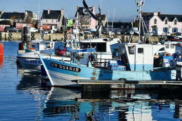 Bateaux de pêche dans le port du Guilvinec (29). Février 2019