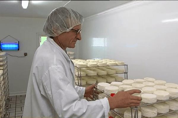 La ferme du Champ secret, dans l'Orne, produit chaque jour 600 camemberts bio, fermier et AOP