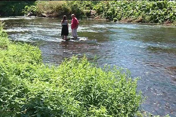 Chaque année, entre 300 et 1 200 saumons sauvages remontent la rivière du Scorff.