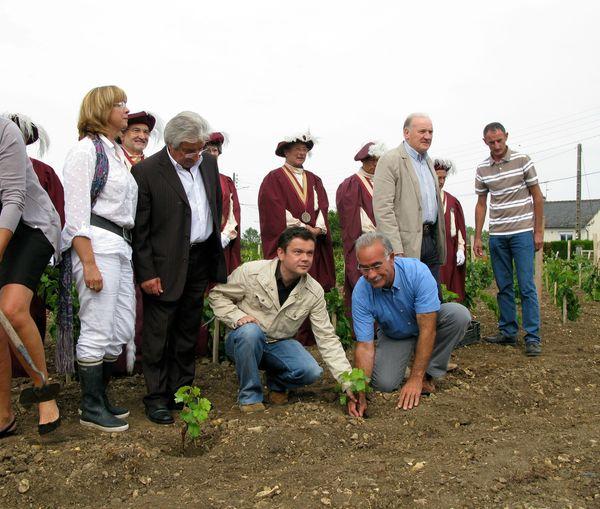 Octobre 2010, l'artiste JM Othoniel (veste beige, au centre) lors de la plantation de pieds de vigne derrière le château royal