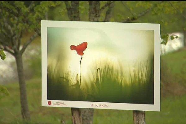 Le village le plus haut des Vosges accueille pour la quatrième année les Sentiers de la photo