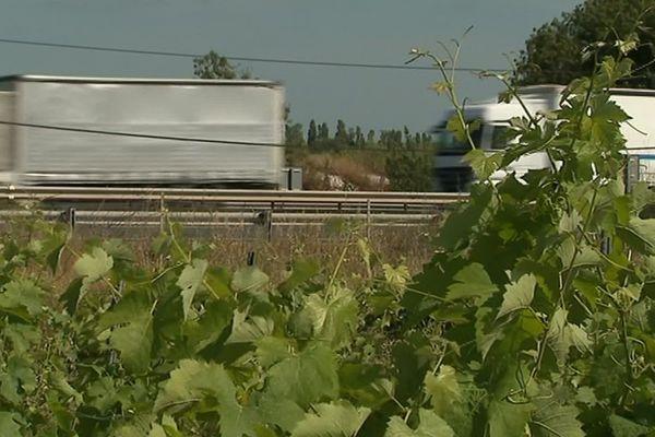 Certains des vignobles AOC Languedoc des Côteaux de la Méjanelle ont déjà subi le doublement de l'autoroute A9 et le contournement ferroviaire de Montpellier. Ils risquent aujourd'hui de perdre plusieurs hectares de vignes avec le tracé routier du contournement Est de Montpellier.