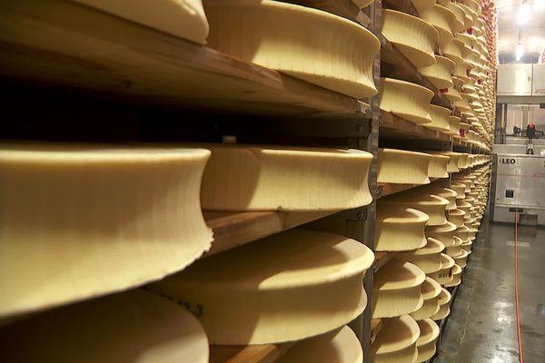 L'Abondance est un fromage à pâte pressée cuite, fabriqué à partir de lait de vache cru et fabriqué en Haute-Savoie.