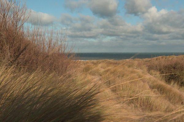 Les Dunes de Flandre, le 28 janvier 2020.