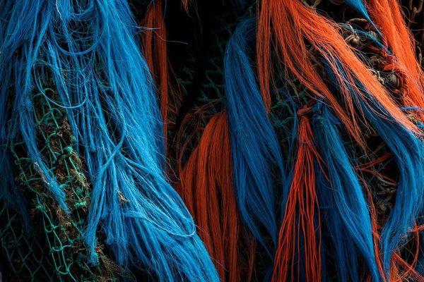 Les filets de pêche à la dérive ont des conséquences sur la biodiversité marine