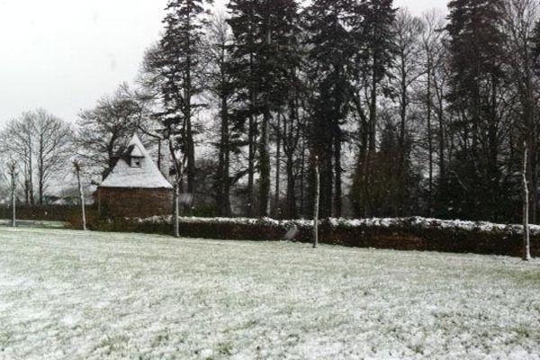 Pabu sous le neige