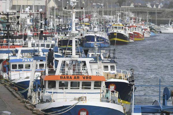 Les bateaux de pêche dans le port du Guilvinec - février 2017
