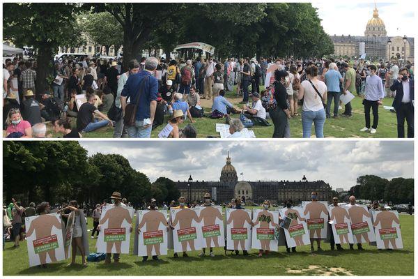 Quelques centaines d'agriculteurs bio se sont rassemblés ce 2 juin près des Invalides à Paris pour dénoncer les nouveaux arbitrages du ministre de l'Agriculture.
