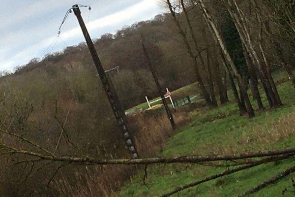 Des arbres sont tombés sur les lignes électriques à Pierre-la-Treiche.