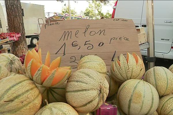 Melons sur un marché de Fréjus, dans le Var