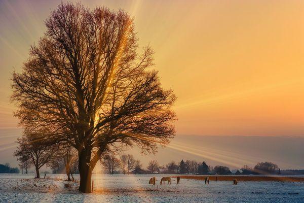 froid le matin, lumineux en journée