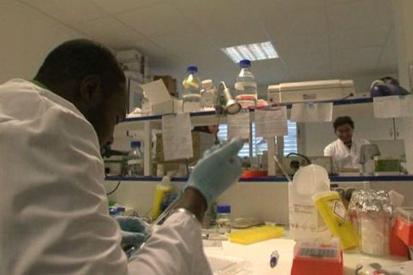 laboratoire Institut Paoli Calmette Marseille