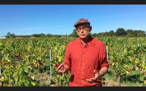 Jean-Michel Poiron dans ses vignes à Château-Thébaud