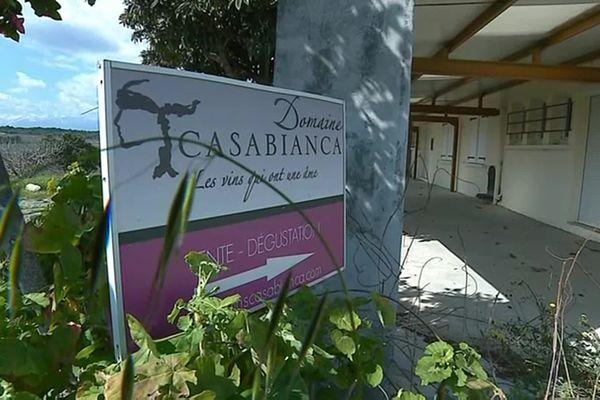 Près de 260 hectares du domaine Casabianca, abandonné depuis 2016, vont être redistribués à de jeunes agriculteurs.