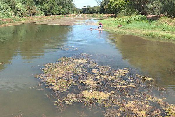 """La rivière plus connue pour ses """"vidourlades"""", inondations lors des épisodes cévenols, n'a pas profité des pluies de juin dernier."""