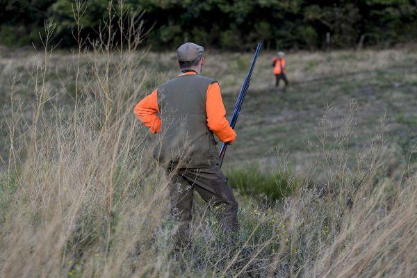 A compter du vendredi 6 novembre, la chasse au gros gibier est autorisée dans l'Allier et le Puy-de-Dôme, malgré le confinement.