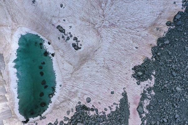 La teinte rouge de la neige s'expliquerait par la présence d'algues