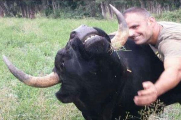 Denis Sanchez avec l'un de ses taureaux de combat.