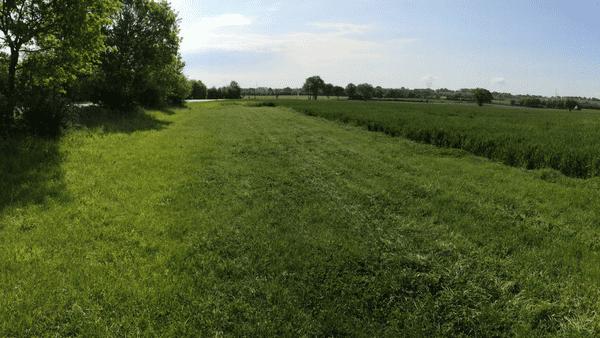 L'utilisation du drone devrait permettre de moins rejeter d'engrais azotés dans la nature