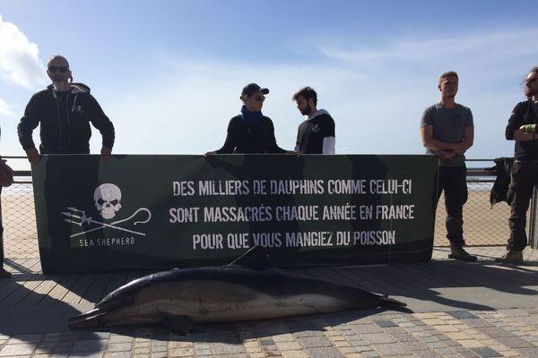 Les militants de Sea Shepherd ont déposé le cadavre d'un dauphin sur le remblai des Sables d'Olonne, le 8 mars 2019