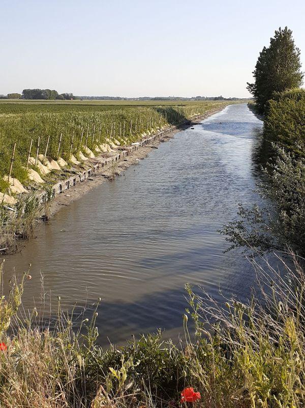 Le canal des Chats entre Ghyvelde et Uxem, nouvelle ligne de front le 2 juin 1940.