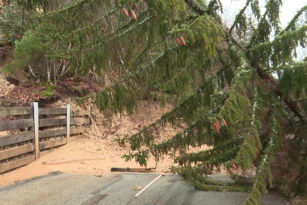Les pluies diluviennes ont raviné les flancs des falaises et parfois couché les arbres sur la chaussée