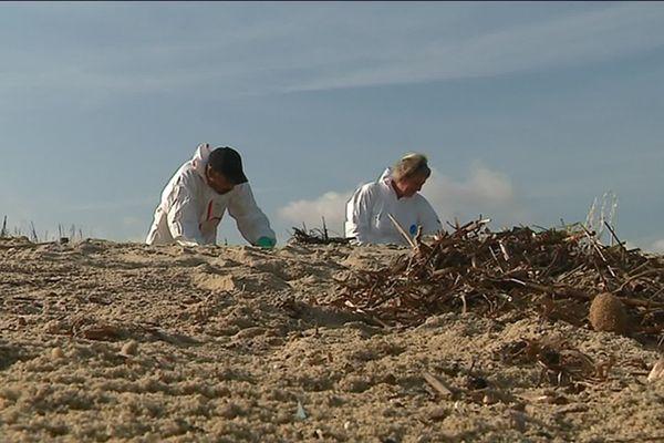 Des équipes de nettoyage resteront mobilisées jusqu'à fin septembre au Cap Taillat à Ramatuelle où des résidus de pétrole continuent de s'échouer.