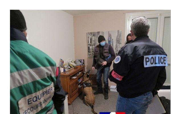 Une soixantaine de policiers et une cinquantaine de gendarmes drômois, assistés de 4 équipes cynophiles sont intervenus dans plusieurs communes de la Drôme