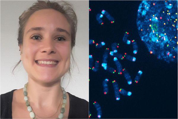 Mathilde Gauchier a passé son doctorat à Montpellier.